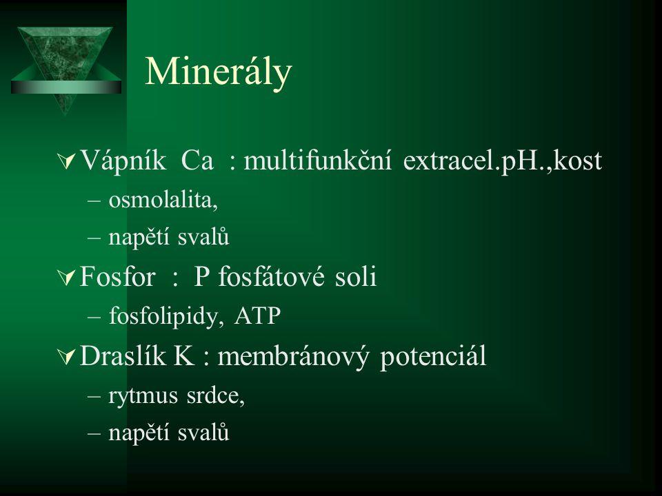 Minerály  Vápník Ca : multifunkční extracel.pH.,kost –osmolalita, –napětí svalů  Fosfor : P fosfátové soli –fosfolipidy, ATP  Draslík K : membránov