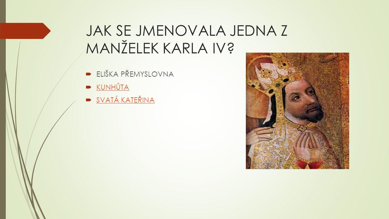 JAK SE JMENOVALA JEDNA Z MANŽELEK KARLA IV.