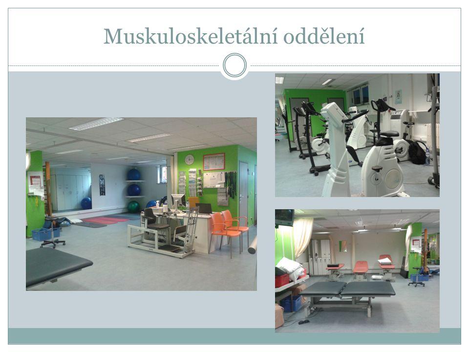 Muskuloskeletální oddělení