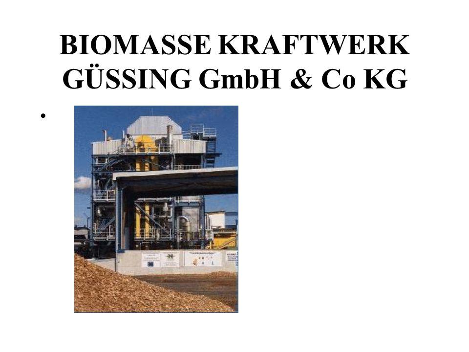 BIOMASSE KRAFTWERK GÜSSING GmbH & Co KG