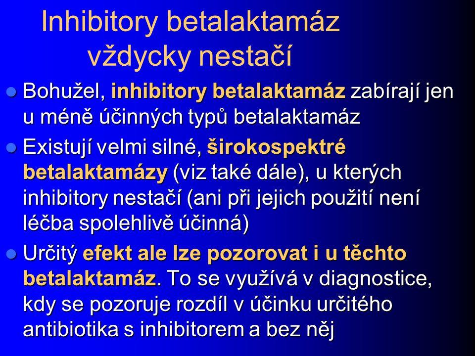 Inhibitory betalaktamáz vždycky nestačí Bohužel, inhibitory betalaktamáz zabírají jen u méně účinných typů betalaktamáz Bohužel, inhibitory betalaktam