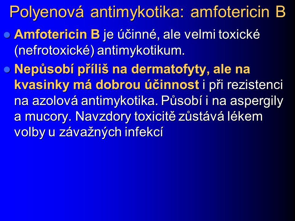 Polyenová antimykotika: amfotericin B Amfotericin B je účinné, ale velmi toxické (nefrotoxické) antimykotikum. Amfotericin B je účinné, ale velmi toxi