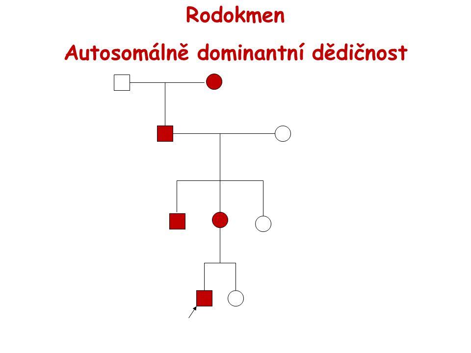 Rodokmen Autosomálně dominantní dědičnost