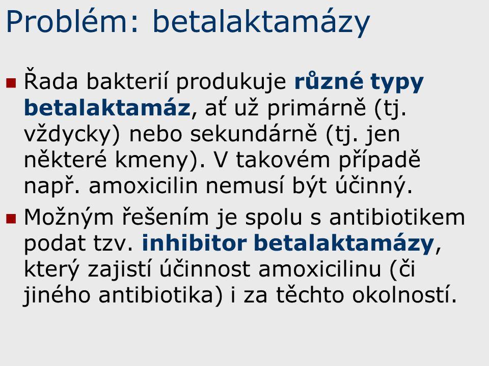 Problém: betalaktamázy Řada bakterií produkuje různé typy betalaktamáz, ať už primárně (tj. vždycky) nebo sekundárně (tj. jen některé kmeny). V takové