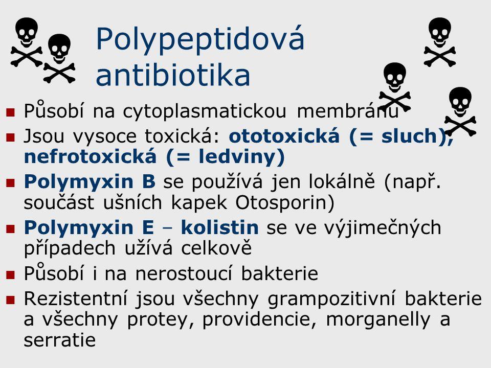 Polypeptidová antibiotika Působí na cytoplasmatickou membránu Jsou vysoce toxická: ototoxická (= sluch), nefrotoxická (= ledviny) Polymyxin B se použí