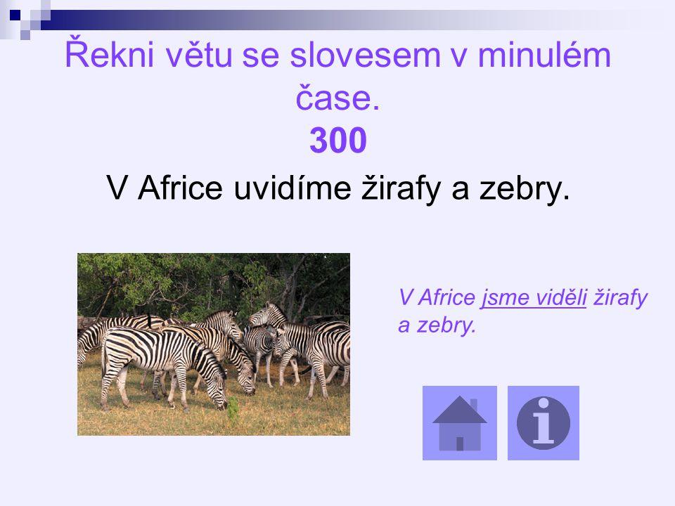 Řekni větu se slovesem v minulém čase. 300 V Africe uvidíme žirafy a zebry.
