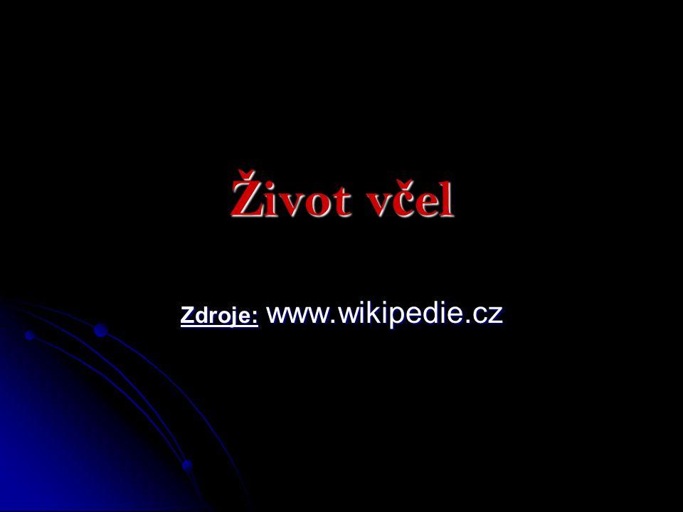 Ž ivot v č el Zdroje: www.wikipedie.cz