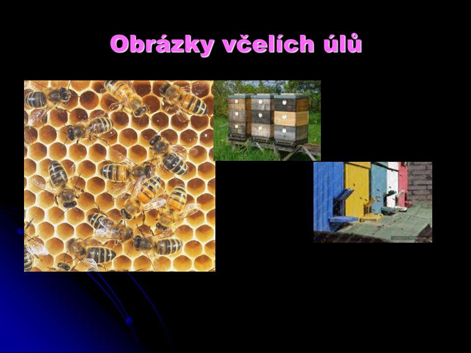 Obrázky včelích úlů