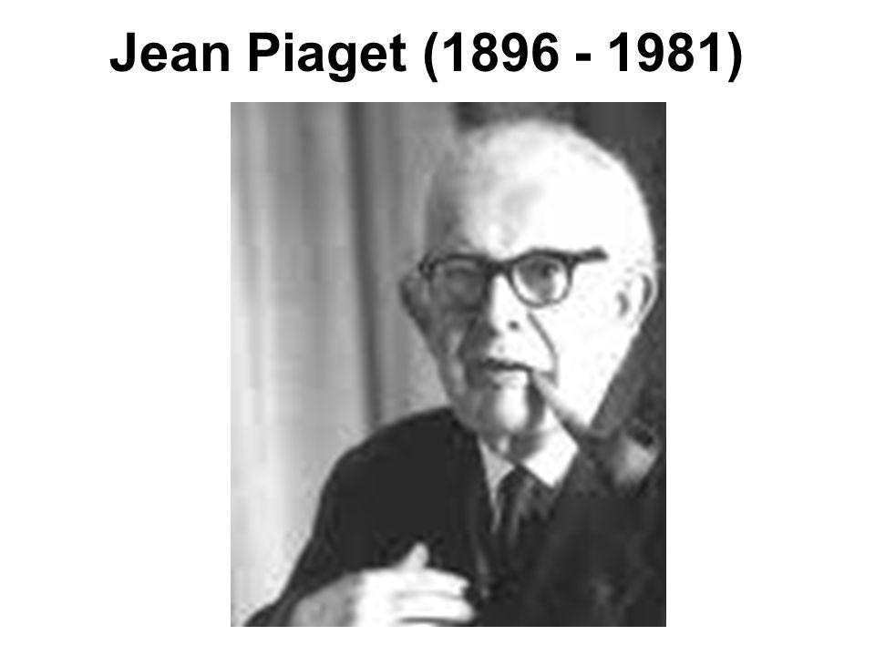 Vidíme tedy, že Piagetovy stádia vlastně zobrazují čtyři typy myšlenkových struktur.