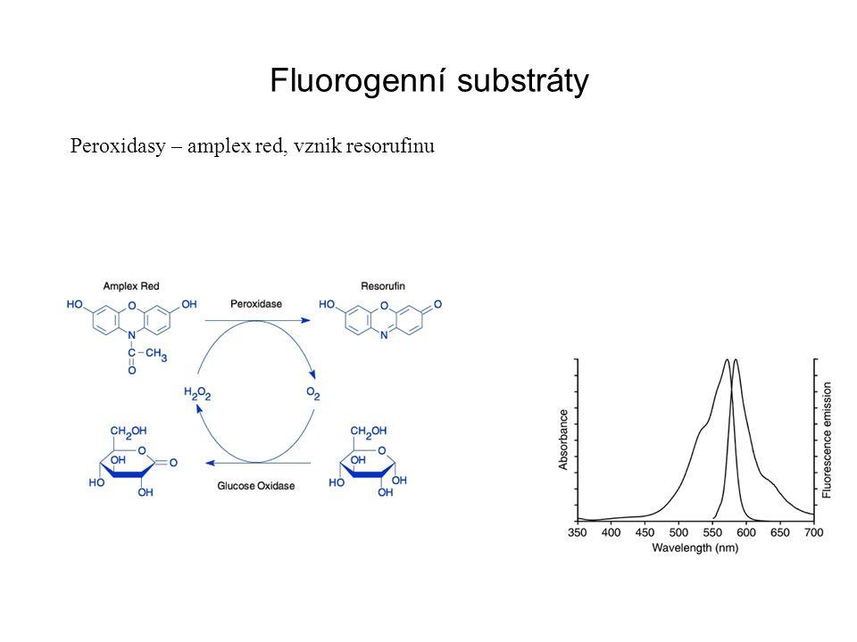 Fluorogenní substráty Peroxidasy – amplex red, vznik resorufinu
