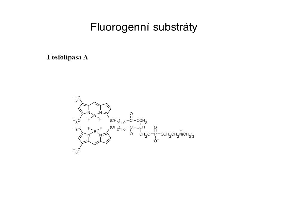Fluorogenní substráty Fosfolipasa A