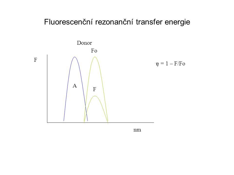 Fluorescenční rezonanční transfer energie F nm A Fo F Donor  = 1 – F/Fo