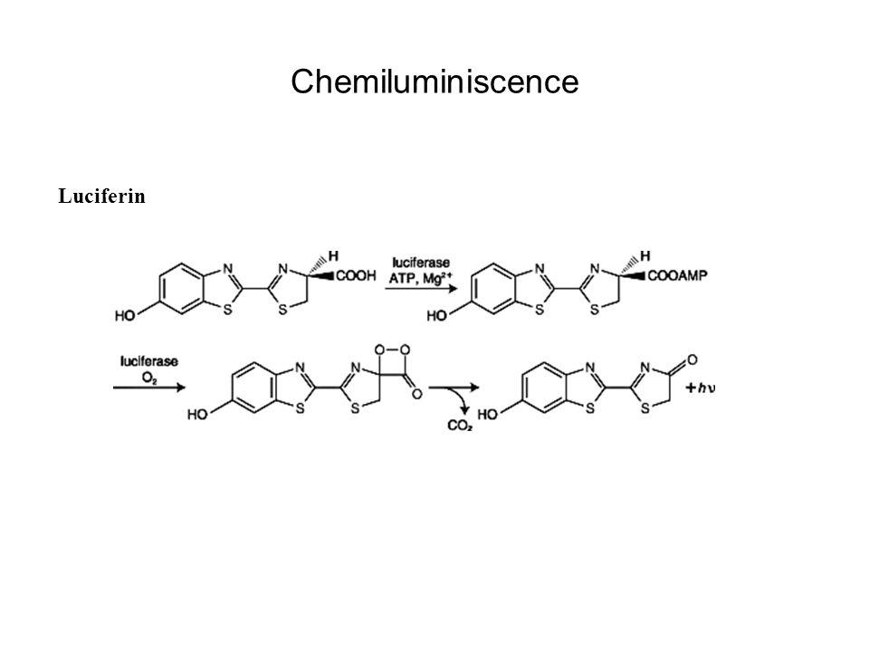 Chemiluminiscence Luciferin