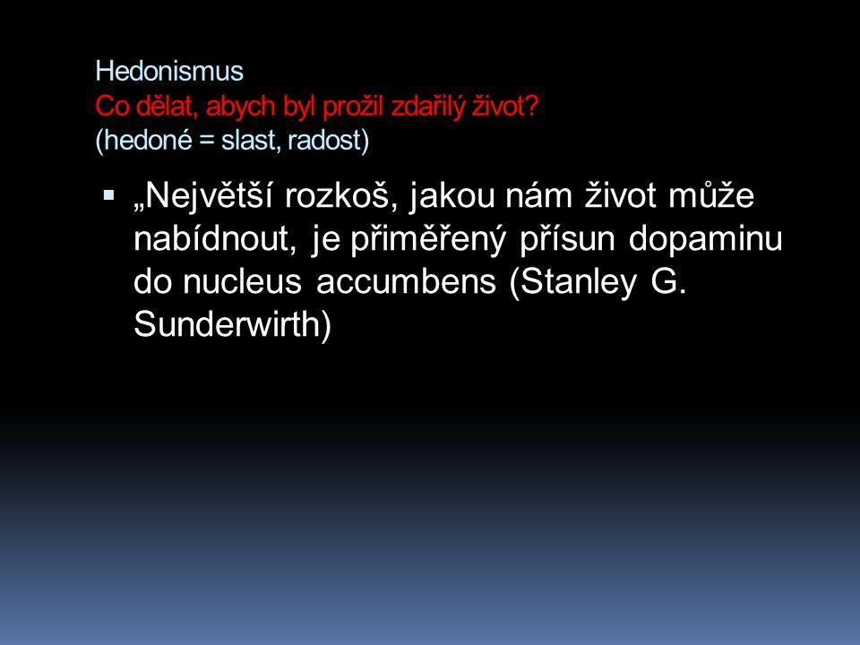 Hedonismus Co dělat, abych byl prožil zdařilý život.