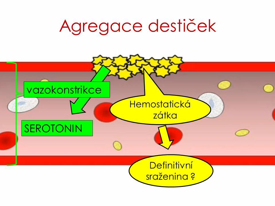 Hemostatická zátka SEROTONIN vazokonstrikce Definitivní sraženina ?