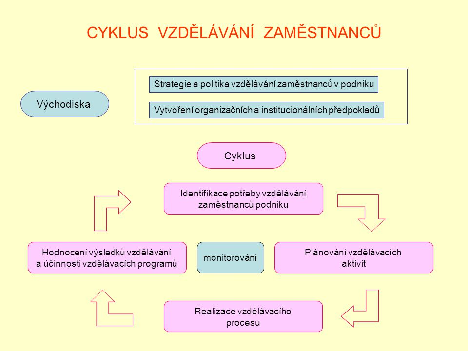 CYKLUS VZDĚLÁVÁNÍ ZAMĚSTNANCŮ Východiska Strategie a politika vzdělávání zaměstnanců v podniku Vytvoření organizačních a institucionálních předpokladů Cyklus Identifikace potřeby vzdělávání zaměstnanců podniku Hodnocení výsledků vzdělávání a účinnosti vzdělávacích programů Plánování vzdělávacích aktivit Realizace vzdělávacího procesu monitorování