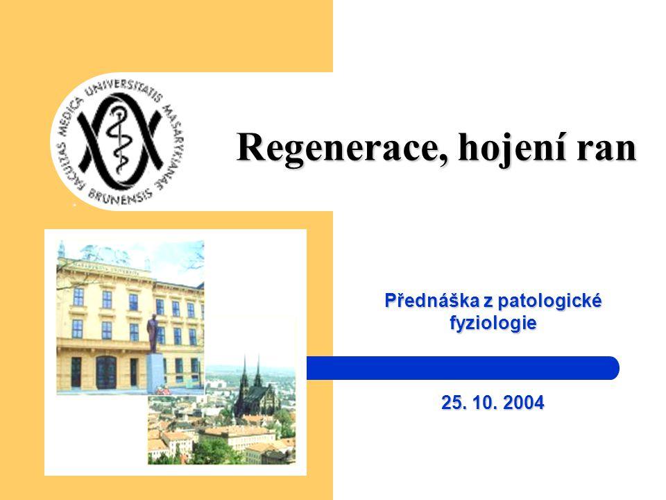 Regenerace, hojení ran Přednáška z patologické fyziologie 25. 10. 2004