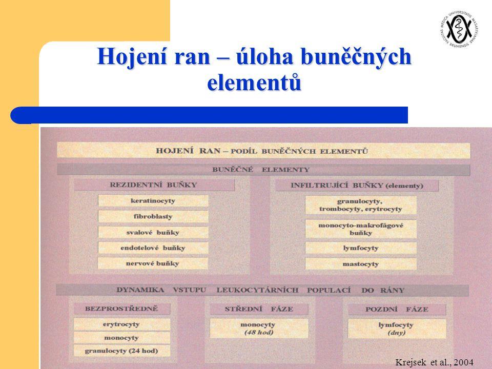 Hojení ran – úloha buněčných elementů Krejsek et al., 2004