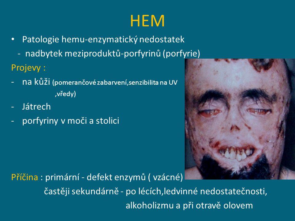 HEM Patologie hemu-enzymatický nedostatek - nadbytek meziproduktů-porfyrinů (porfyrie) Projevy : -na kůži (pomerančové zabarvení,senzibilita na UV,vředy) -Játrech -porfyriny v moči a stolici Příčina : primární - defekt enzymů ( vzácné) častěji sekundárně - po lécích,ledvinné nedostatečnosti, alkoholizmu a při otravě olovem