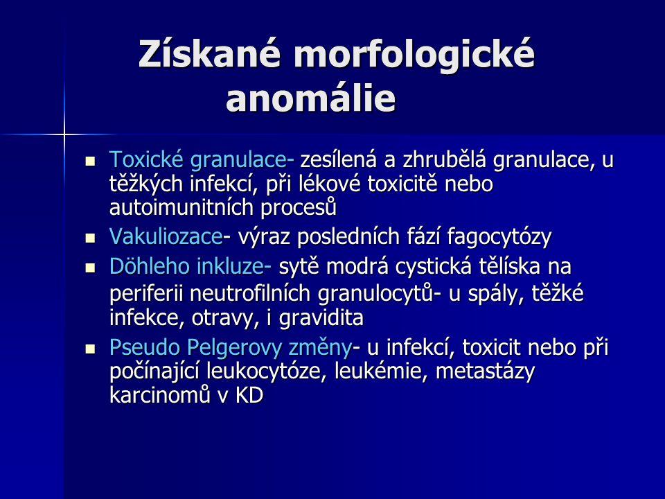 Získané morfologické anomálie Získané morfologické anomálie Toxické granulace- zesílená a zhrubělá granulace, u těžkých infekcí, při lékové toxicitě nebo autoimunitních procesů Toxické granulace- zesílená a zhrubělá granulace, u těžkých infekcí, při lékové toxicitě nebo autoimunitních procesů Vakuliozace- výraz posledních fází fagocytózy Vakuliozace- výraz posledních fází fagocytózy Döhleho inkluze- sytě modrá cystická tělíska na periferii neutrofilních granulocytů- u spály, těžké infekce, otravy, i gravidita Döhleho inkluze- sytě modrá cystická tělíska na periferii neutrofilních granulocytů- u spály, těžké infekce, otravy, i gravidita Pseudo Pelgerovy změny- u infekcí, toxicit nebo při počínající leukocytóze, leukémie, metastázy karcinomů v KD Pseudo Pelgerovy změny- u infekcí, toxicit nebo při počínající leukocytóze, leukémie, metastázy karcinomů v KD