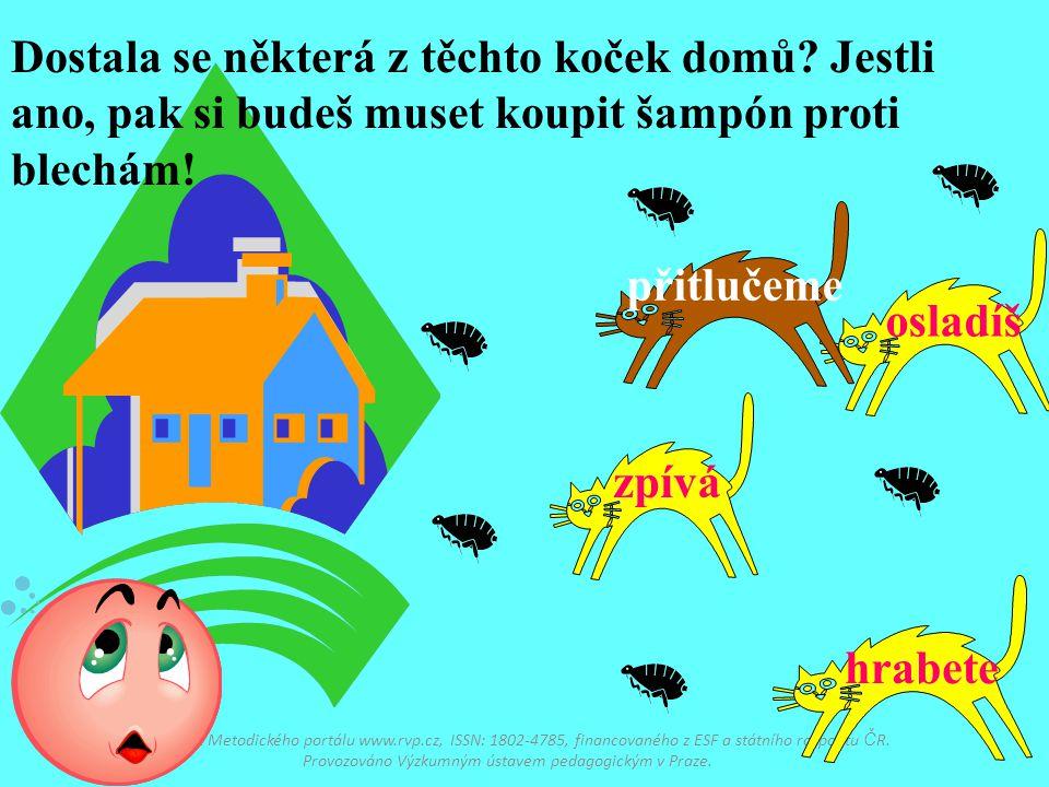 Dostupné z Metodického portálu www.rvp.cz, ISSN: 1802-4785, financovaného z ESF a státního rozpo č tu Č R. Provozováno Výzkumným ústavem pedagogickým