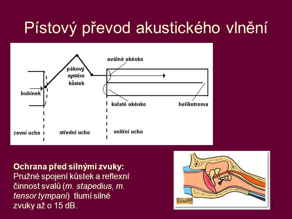 12 Pístový převod akustického vlnění Ochrana před silnými zvuky: Pružné spojení kůstek a reflexní činnost svalů (m. stapedius, m. tensor tympani) tlum