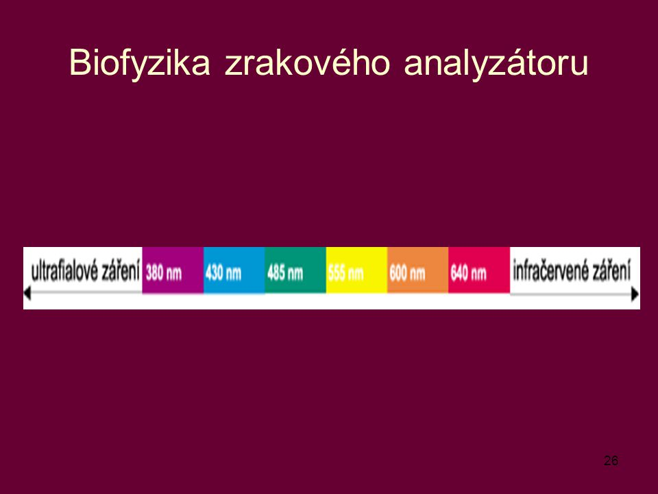 26 Biofyzika zrakového analyzátoru