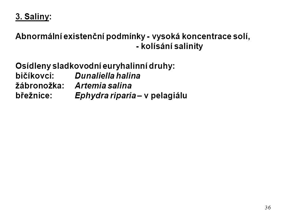 36 3. Saliny: Abnormální existenční podmínky - vysoká koncentrace solí, - kolísání salinity Osídleny sladkovodní euryhalinní druhy: bičíkovci: Dunalie