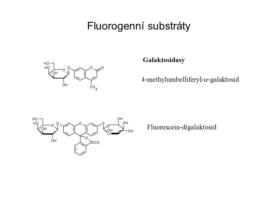 Fluorogenní substráty Galaktosidasy 4-methylumbelliferyl-  -galaktosid Fluorescein-digalaktosid