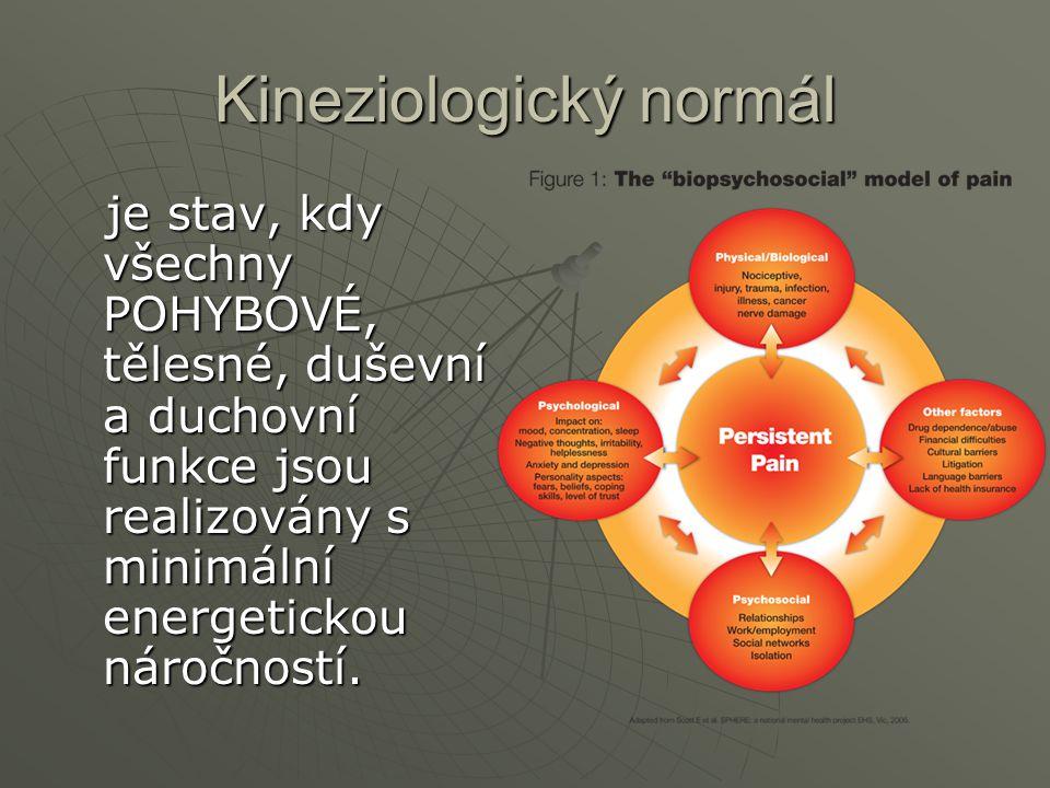 Kineziologický normál je stav, kdy všechny POHYBOVÉ, tělesné, duševní a duchovní funkce jsou realizovány s minimální energetickou náročností. je stav,