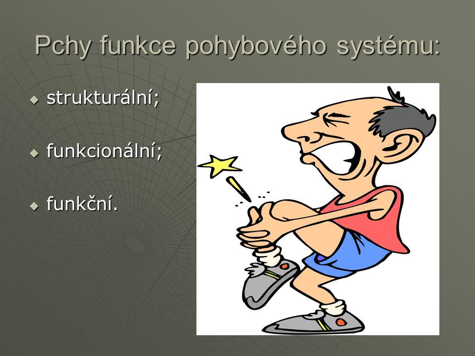 Pchy funkce pohybového systému:  strukturální;  funkcionální;  funkční.