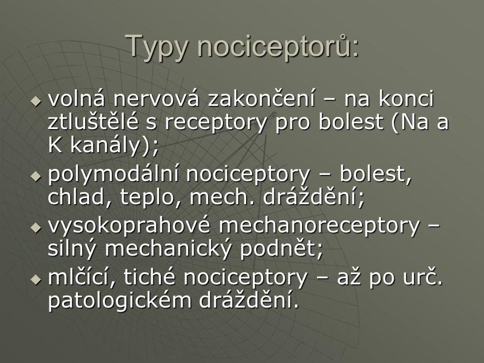 Typy nociceptorů:  volná nervová zakončení – na konci ztluštělé s receptory pro bolest (Na a K kanály);  polymodální nociceptory – bolest, chlad, te