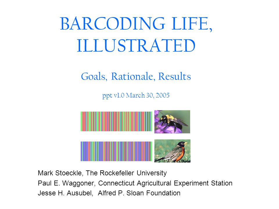 BARCODING LIFE, ILLUSTRATED Goals, Rationale, Results ppt v1.0 March 30, 2005 Mark Stoeckle, The Rockefeller University Paul E. Waggoner, Connecticut