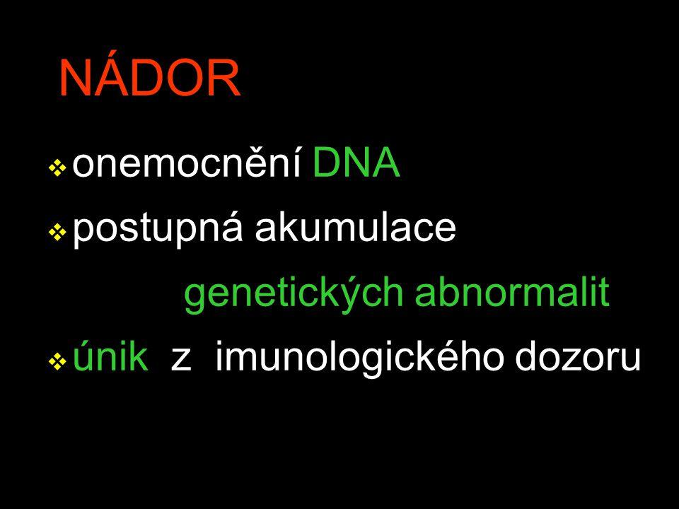 NÁDOR v onemocnění DNA v postupná akumulace genetických abnormalit v únik z imunologického dozoru