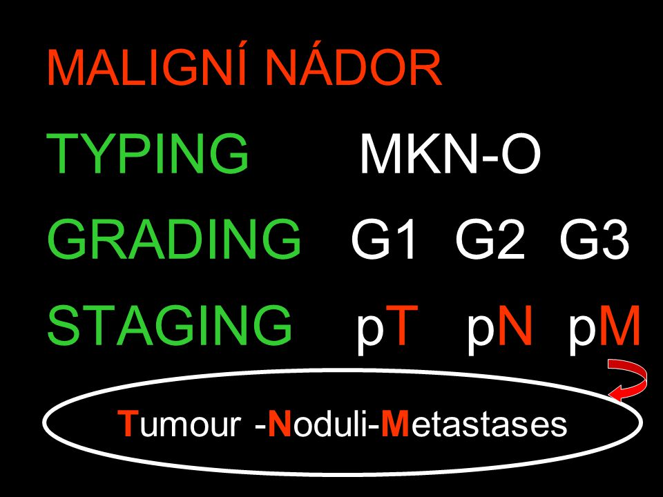 MALIGNÍ NÁDOR TYPING MKN-O GRADING G1 G2 G3 STAGING pT pN pM Tumour -Noduli-Metastases