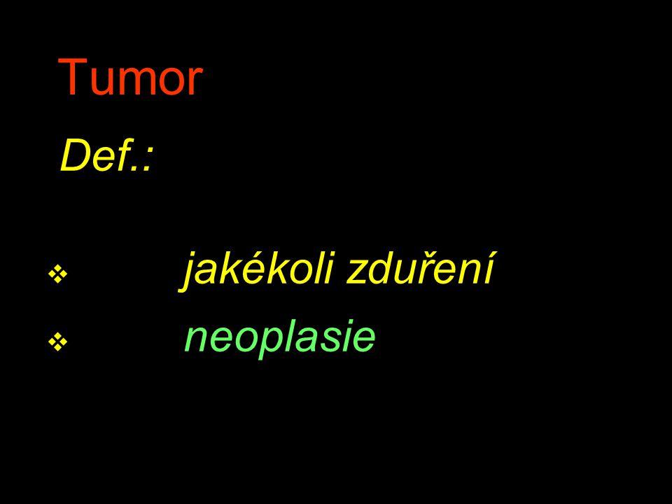 Tumor Def.: v jakékoli zduření v neoplasie