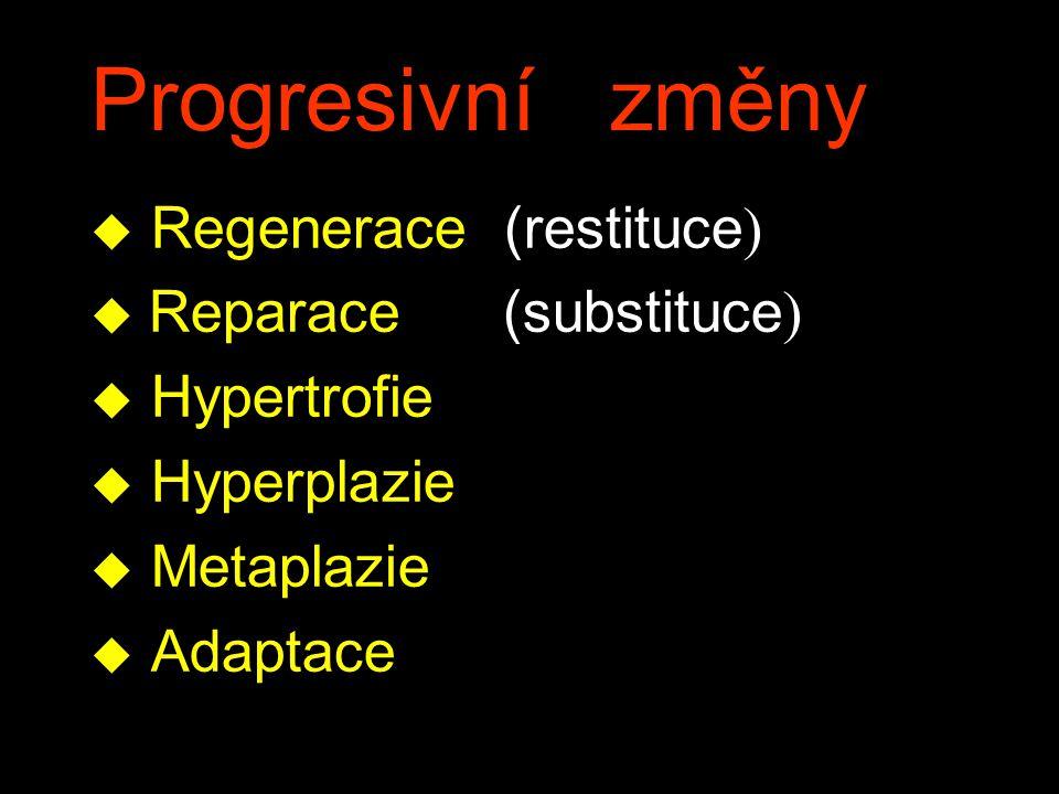 Progresivní změny  Regenerace (restituce )  Reparace (substituce ) u Hypertrofie u Hyperplazie u Metaplazie u Adaptace