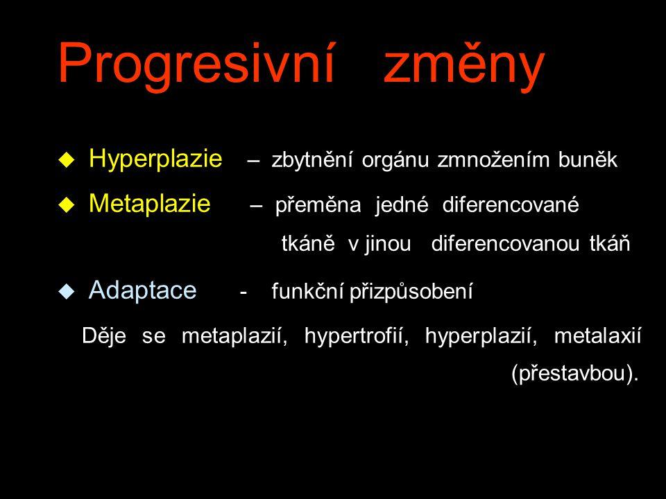 Progresivní změny u Hyperplazie – zbytnění orgánu zmnožením buněk  Metaplazie – přeměna jedné diferencované tkáně v jinou diferencovanou tkáň  Adapt