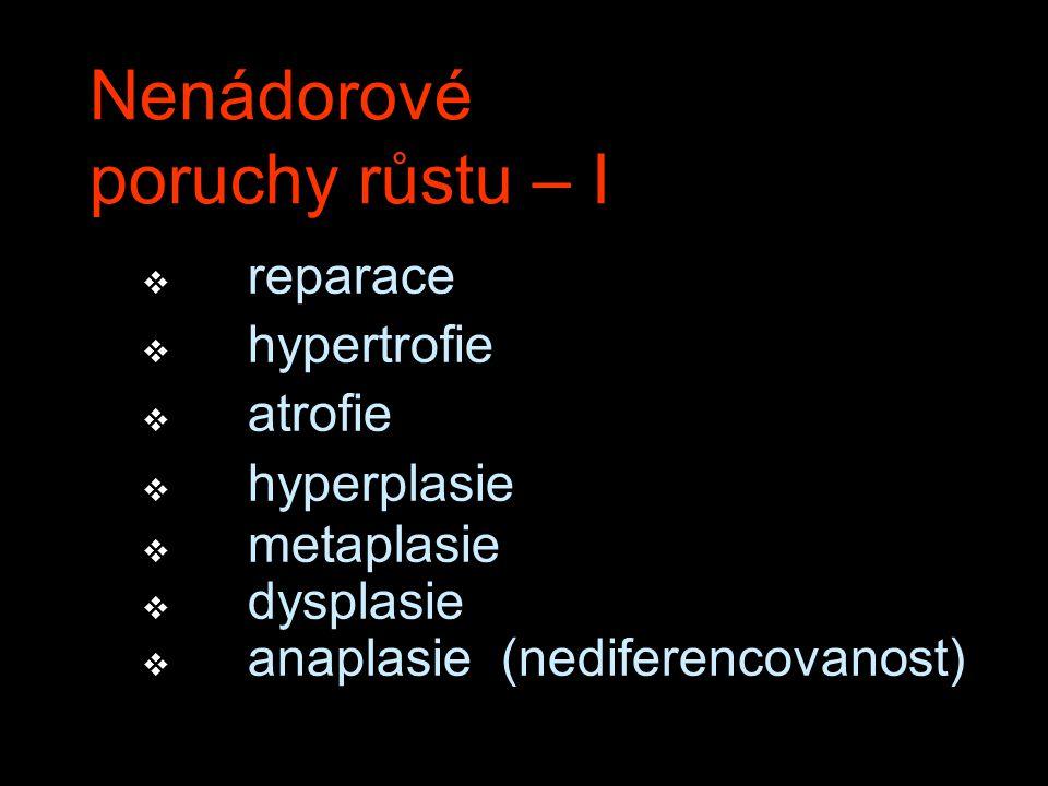 Nenádorové poruchy růstu – I v reparace v hypertrofie v atrofie v hyperplasie v metaplasie v dysplasie v anaplasie (nediferencovanost)