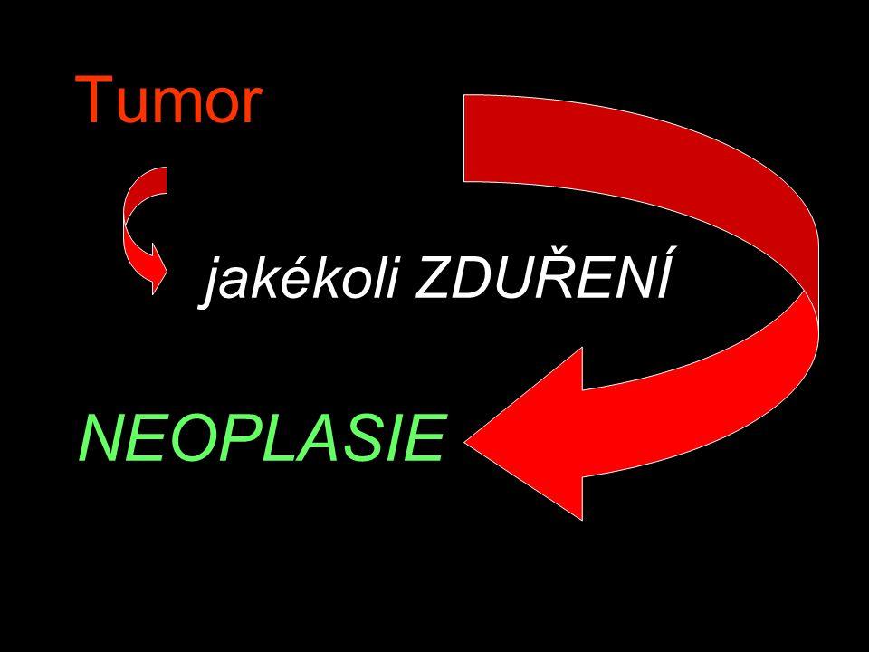 Tumor jakékoli ZDUŘENÍ NEOPLASIE