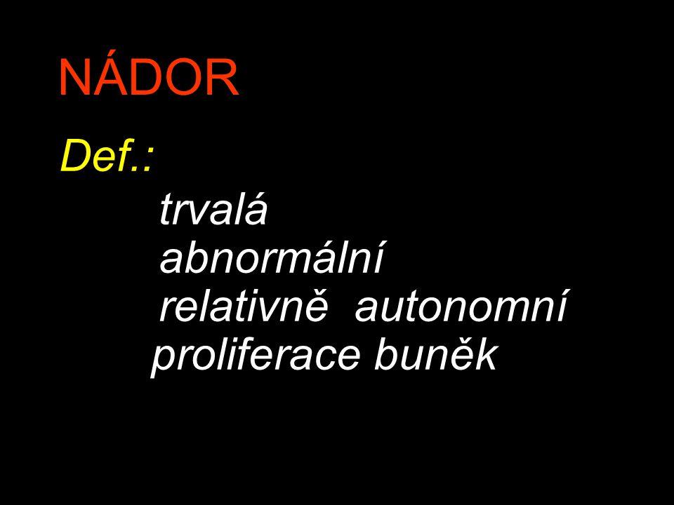 NÁDOR Def.: trvalá abnormální relativně autonomní proliferace buněk