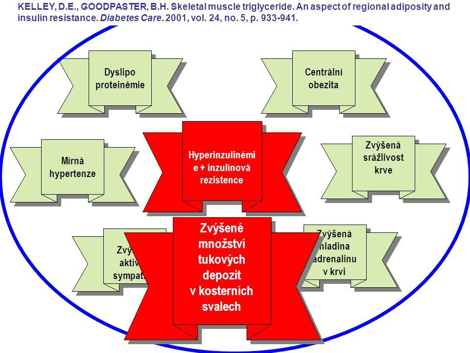 Hyperinzulinémi e + inzulínová rezistence Centrální obezita Dyslipo proteinémie Dyslipo proteinémie Mírná hypertenze Mírná hypertenze Zvýšená srážlivo