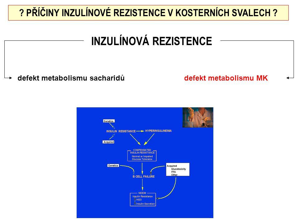 INZULÍNOVÁ REZISTENCE ? PŘÍČINY INZULÍNOVÉ REZISTENCE V KOSTERNÍCH SVALECH ? defekt metabolismu sacharidůdefekt metabolismu MK