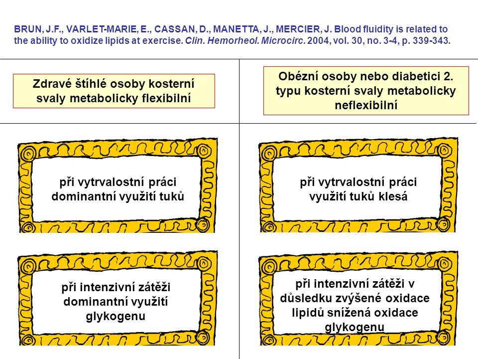 Zdravé štíhlé osoby kosterní svaly metabolicky flexibilní BRUN, J.F., VARLET-MARIE, E., CASSAN, D., MANETTA, J., MERCIER, J. Blood fluidity is related