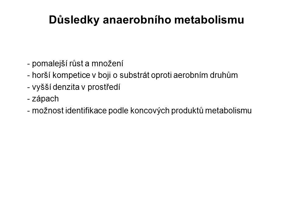 Důsledky anaerobního metabolismu - pomalejší růst a množení - horší kompetice v boji o substrát oproti aerobním druhům - vyšší denzita v prostředí - z