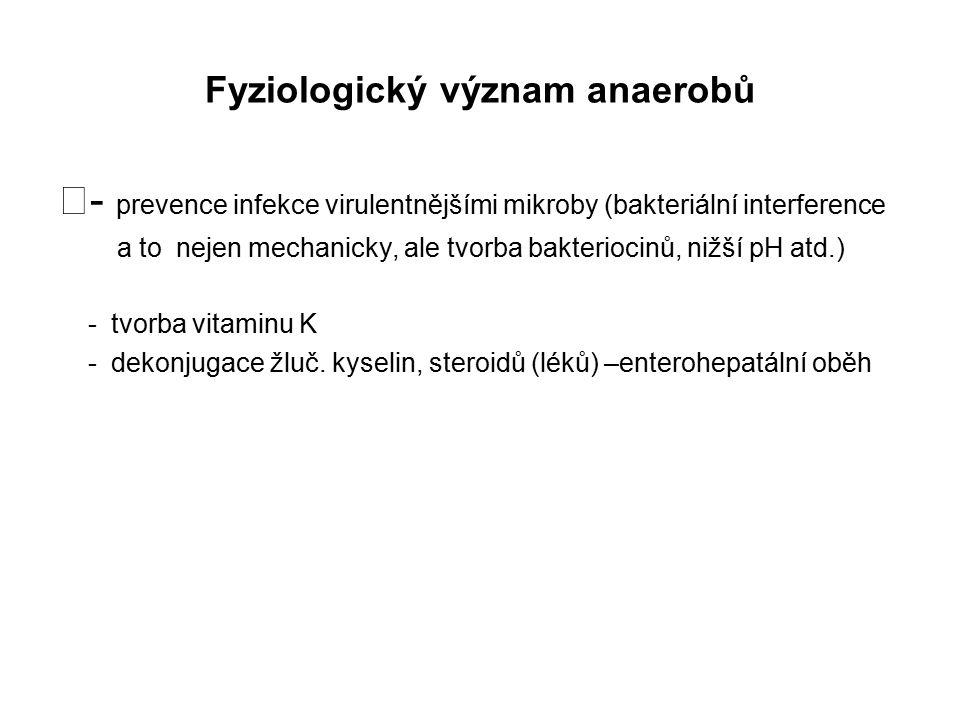 Fyziologický význam anaerobů - prevence infekce virulentnějšími mikroby (bakteriální interference a to nejen mechanicky, ale tvorba bakteriocinů, nižš