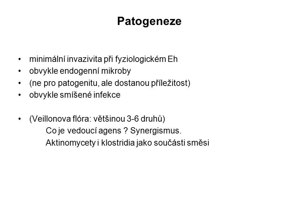 Patogeneze minimální invazivita při fyziologickém Eh obvykle endogenní mikroby (ne pro patogenitu, ale dostanou příležitost) obvykle smíšené infekce (