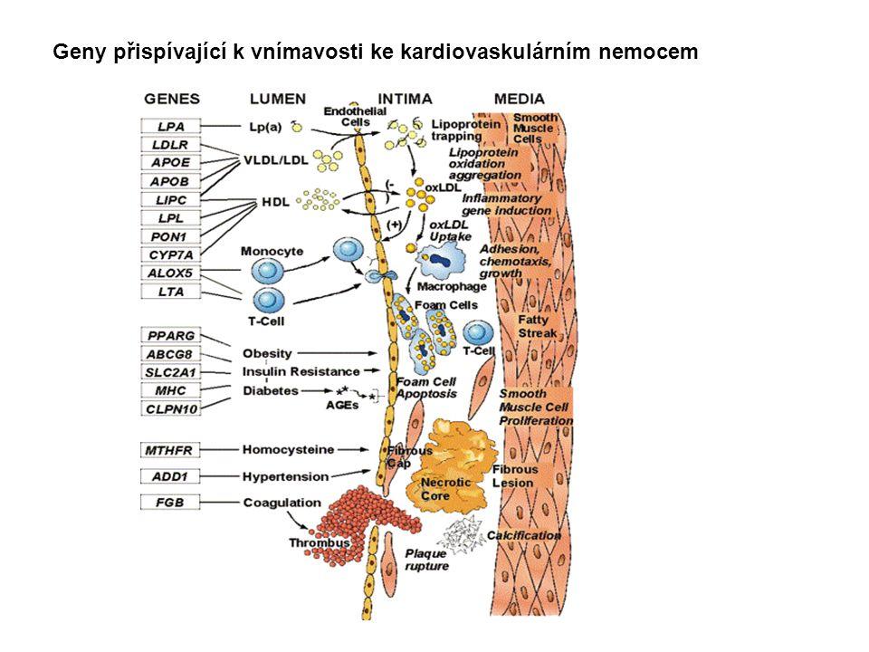 Geny přispívající k vnímavosti ke kardiovaskulárním nemocem