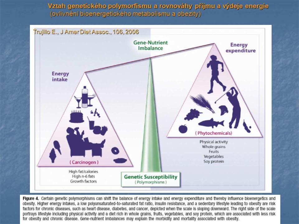 Vztah genetického polymorfismu a rovnováhy příjmu a výdeje energie (ovlivnění bioenergetického metabolismu a obezity) (ovlivnění bioenergetického meta