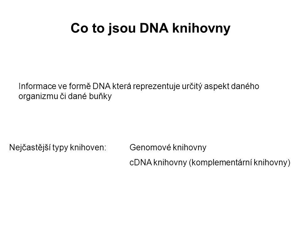 Co to jsou DNA knihovny Informace ve formě DNA která reprezentuje určitý aspekt daného organizmu či dané buňky Nejčastější typy knihoven:Genomové knih